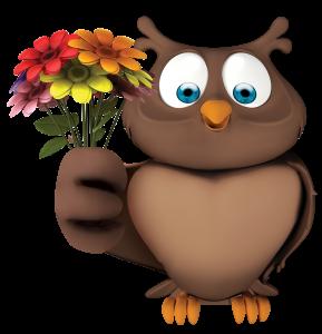Coruja Flores